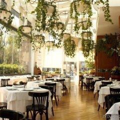 Отель Marquis Reforma Мексика, Мехико - отзывы, цены и фото номеров - забронировать отель Marquis Reforma онлайн помещение для мероприятий