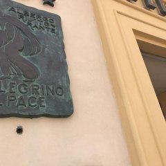 Hotel Pellegrino E Pace Лорето удобства в номере фото 2