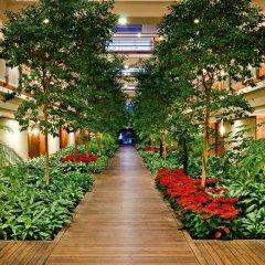Отель Gloria Serenity Resort - All Inclusive фото 8
