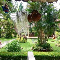 Отель Falang Paradise фото 10