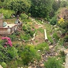 Отель Eagles Nest Vacation Home Rental Канада, Аптаун - отзывы, цены и фото номеров - забронировать отель Eagles Nest Vacation Home Rental онлайн фото 2
