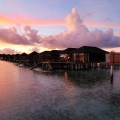 Отель Paradise Island Resort & Spa фото 14