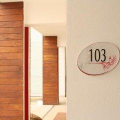 Отель Cache Hotel Boutique - Только для взрослых Мексика, Плая-дель-Кармен - отзывы, цены и фото номеров - забронировать отель Cache Hotel Boutique - Только для взрослых онлайн фото 10