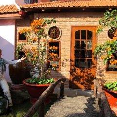 Отель Villa Pink House Вьетнам, Далат - отзывы, цены и фото номеров - забронировать отель Villa Pink House онлайн фото 10