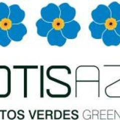 Отель Lofts Azul Pastel с домашними животными