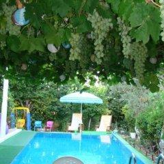Отель Antalya Farm House бассейн фото 2