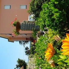 Отель La Mimosa Кастаньето-Кардуччи фото 6