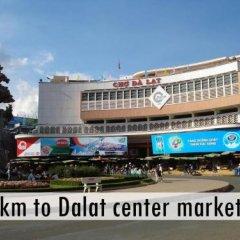 GoGo Dalat Hostel Далат городской автобус