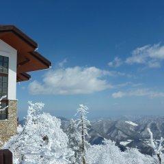 Отель Swiss Pension Южная Корея, Пхёнчан - отзывы, цены и фото номеров - забронировать отель Swiss Pension онлайн фото 3