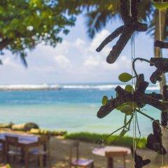 Отель Palm Villa гостиничный бар