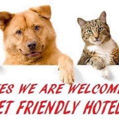 Hotel Sabrina Nord Римини с домашними животными