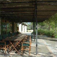 Отель Agroturismo Ses Arenes фото 5