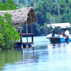 Отель swelanka residence Шри-Ланка, Бентота - отзывы, цены и фото номеров - забронировать отель swelanka residence онлайн приотельная территория