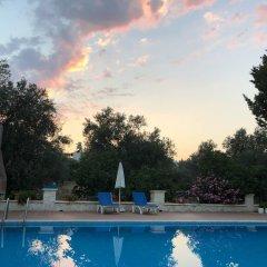 Ferah Hotel Турция, Патара - отзывы, цены и фото номеров - забронировать отель Ferah Hotel онлайн бассейн фото 2