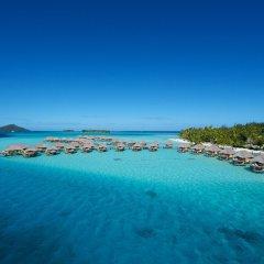 Отель Bora Bora Pearl Beach Resort Французская Полинезия, Бора-Бора - отзывы, цены и фото номеров - забронировать отель Bora Bora Pearl Beach Resort онлайн пляж фото 2