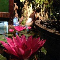 Отель The Lotus Garden Hotel Филиппины, Пуэрто-Принцеса - отзывы, цены и фото номеров - забронировать отель The Lotus Garden Hotel онлайн бассейн