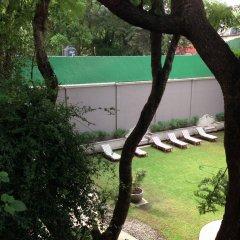 Отель Pug Seal B&B Coyoacan Мексика, Мехико - отзывы, цены и фото номеров - забронировать отель Pug Seal B&B Coyoacan онлайн детские мероприятия