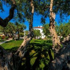 Отель Flegra Palace фото 3