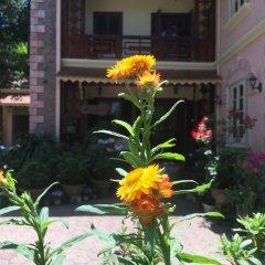 Отель Sapa Garden Bed and Breakfast Вьетнам, Шапа - отзывы, цены и фото номеров - забронировать отель Sapa Garden Bed and Breakfast онлайн фото 9