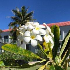 Отель Garden Villa Hotel США, Тамунинг - 2 отзыва об отеле, цены и фото номеров - забронировать отель Garden Villa Hotel онлайн фото 4