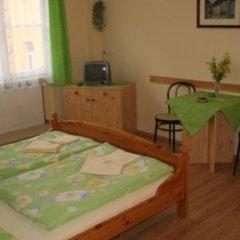 Отель Chebsky dvur - Egerlander Hof комната для гостей фото 5