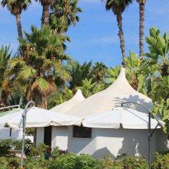 Отель Cuore Di Palme Флорида фото 10