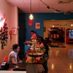 Отель Blue Pepper Hostel & Bar Мексика, Гвадалахара - отзывы, цены и фото номеров - забронировать отель Blue Pepper Hostel & Bar онлайн фото 13