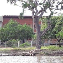 Отель Tree Tops Yala фото 3