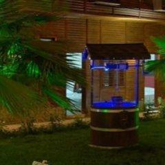 Trilye Kaplan Hotel Турция, Армутлу - отзывы, цены и фото номеров - забронировать отель Trilye Kaplan Hotel онлайн фото 10