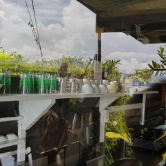 Отель Gecko Lodge Fiji Савусаву фото 3