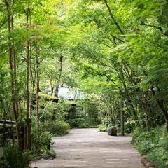 Отель Okunoyu Минамиогуни приотельная территория фото 2