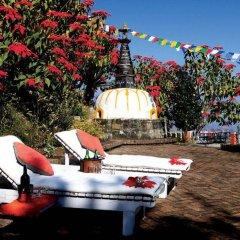 Отель Dhulikhel Lodge Resort Непал, Дхуликхел - отзывы, цены и фото номеров - забронировать отель Dhulikhel Lodge Resort онлайн бассейн