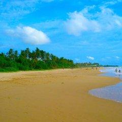 Отель Green Garden Guest House Шри-Ланка, Берувела - 1 отзыв об отеле, цены и фото номеров - забронировать отель Green Garden Guest House онлайн пляж