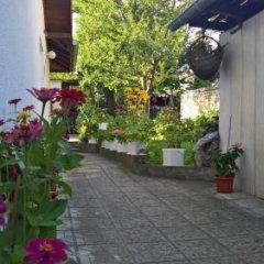 Отель Nenkovi Guest House Болгария, Трявна - отзывы, цены и фото номеров - забронировать отель Nenkovi Guest House онлайн фото 7