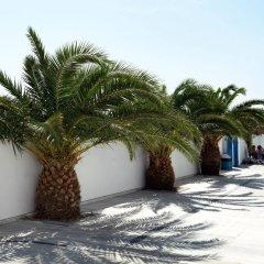 Отель Villa Valvis Греция, Остров Санторини - отзывы, цены и фото номеров - забронировать отель Villa Valvis онлайн парковка