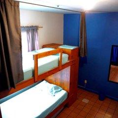 Отель Blue Pepper Hostel & Bar Мексика, Гвадалахара - отзывы, цены и фото номеров - забронировать отель Blue Pepper Hostel & Bar онлайн удобства в номере фото 2