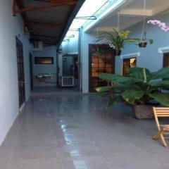 Cloudy Homestay and Hostel интерьер отеля фото 3