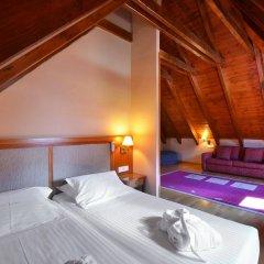 Hotel Acevi Val d'Aran комната для гостей фото 5