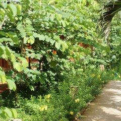 Отель Bauhinia Resort фото 6