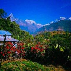 Отель Aroma Tourist Hostel Непал, Покхара - отзывы, цены и фото номеров - забронировать отель Aroma Tourist Hostel онлайн фото 3