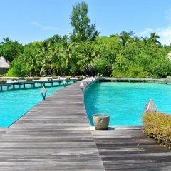 Отель Gangehi Island Resort бассейн фото 3