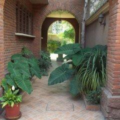 Отель Hostal La Encantada Мексика, Мехико - 1 отзыв об отеле, цены и фото номеров - забронировать отель Hostal La Encantada онлайн фото 2