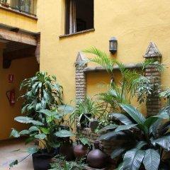 Отель Hostal Lojo Испания, Кониль-де-ла-Фронтера - отзывы, цены и фото номеров - забронировать отель Hostal Lojo онлайн