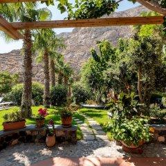Отель Santorini Mystique Garden Греция, Остров Санторини - отзывы, цены и фото номеров - забронировать отель Santorini Mystique Garden онлайн фото 4