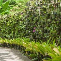 Отель Thavorn Palm Beach Resort Phuket Таиланд, Пхукет - 10 отзывов об отеле, цены и фото номеров - забронировать отель Thavorn Palm Beach Resort Phuket онлайн фото 3