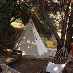 Отель Shiva Camp Патара помещение для мероприятий фото 2