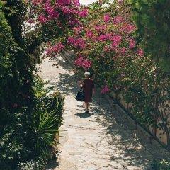 Отель Bougainville Bay Serviced Apartments Албания, Саранда - отзывы, цены и фото номеров - забронировать отель Bougainville Bay Serviced Apartments онлайн фото 3