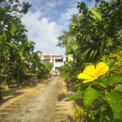 Отель Mr Tho Garden Villas фото 15