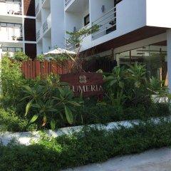 Отель Plumeria Maldives фото 5