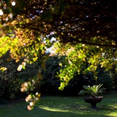 Отель The Yeatman Португалия, Вила-Нова-ди-Гая - отзывы, цены и фото номеров - забронировать отель The Yeatman онлайн фото 8
